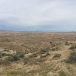 2015 08 14 2015 08 14 McCullough Peaks Heard Management area 4