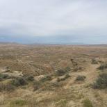 2015 08 14 2015 08 14 McCullough Peaks Heard Management area 4